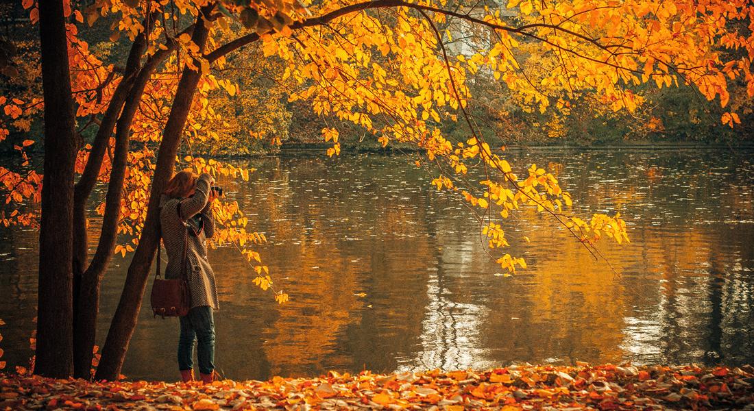 fall-family-photos-cover-2
